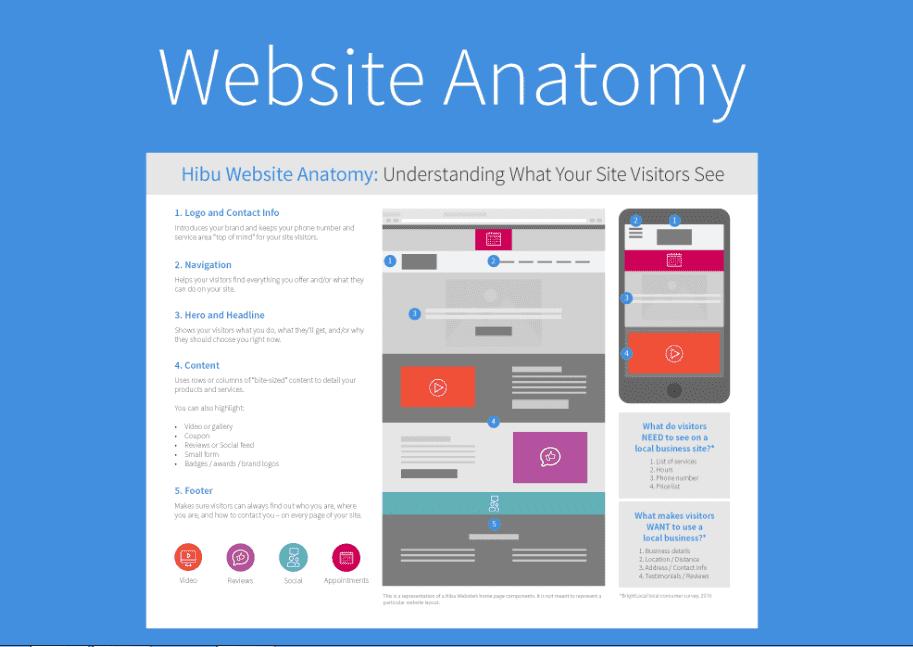 anatomi web